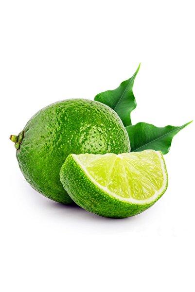 Demet'in Bahçesi Lime (3 KG)