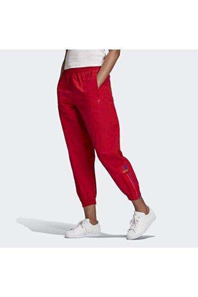 adidas Track Pant Kadın Eşofman Altı