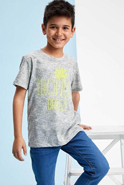 Gri Erkek Çocuk Desenli Kısa Kollu T-Shirt