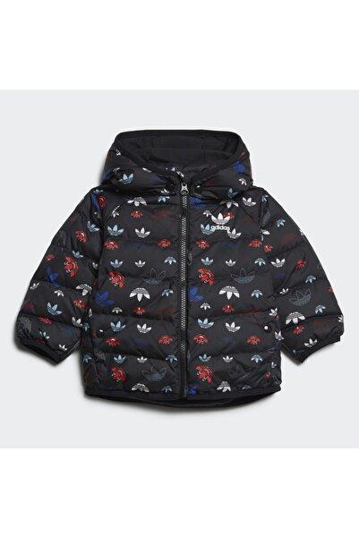 adidas Erkek Bebek Siyah Kuş Tüyü Mont