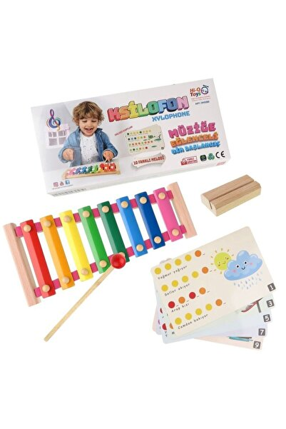 Hi-Q Toys Ahşap 8'li Ksilofon - Renkli Nota Kartlı Melodili Ksilofon