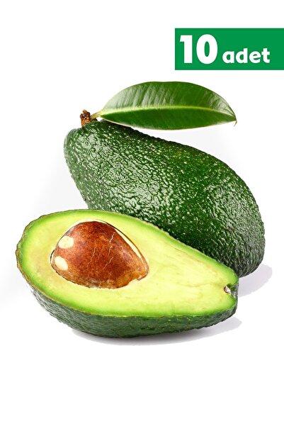 TROPİK SEPETİ Hass Avokado - 10 Adet