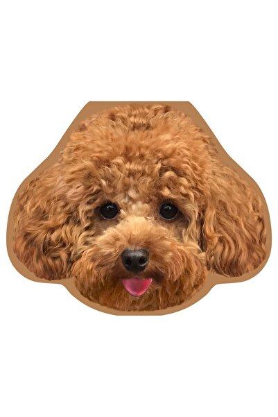 Cheerlabs Toy Poodle Formlu Ses Kaydeden Tebrik Kartı