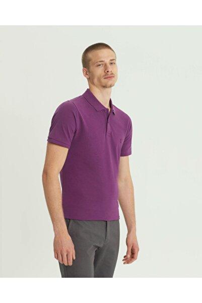 SÜVARİ Erkek Mor  Slim Fit Polo Yaka Tişört