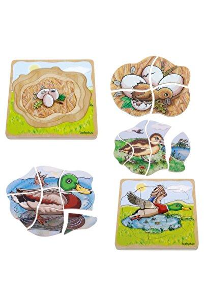 Beleduc Oluşum Puzzle - Ördek