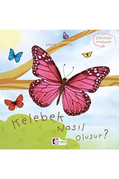 Mor Elma Yayıncılık Kelebek Nasıl Oluşur - Oluşum Hikâyeleri - Okul Öncesi Kitabı