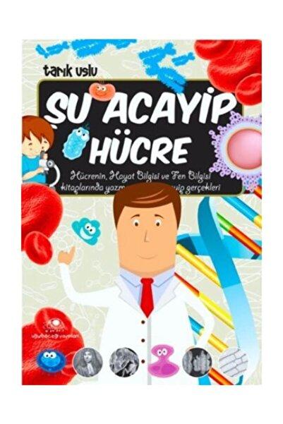 Uğurböceği Yayınları Şu Acayip Hücre - Tarık Uslu