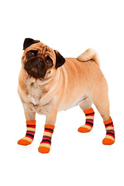 Karlie Köpek Çorabı 2li Small Turuncu- Beyaz