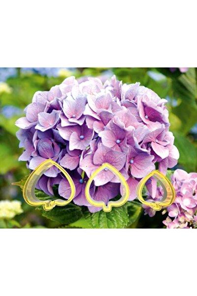 öztürkler Ortanca Şeker Hamuru Çiçek Yapım Seti 3 lü