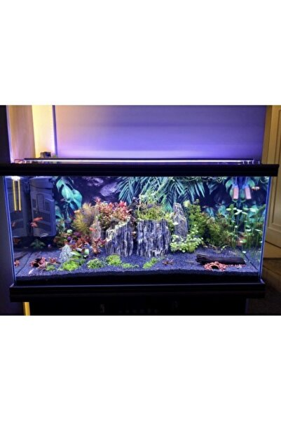 Aqualed Aquaplant Full Spectrum 90 cm 4 Renk Özel Akvaryum Aydınlatma