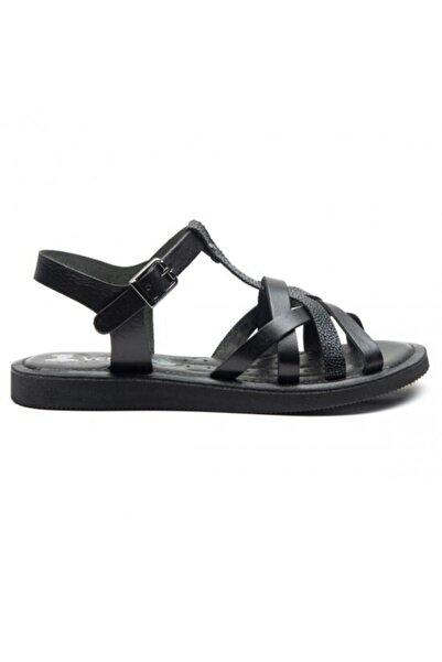 Venüs Hakiki Deri Kadın Sandalet 20980208