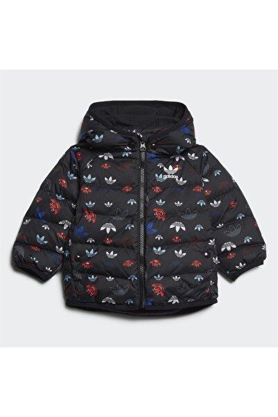 adidas Erkek Bebek Siyah Mont Down Jacket