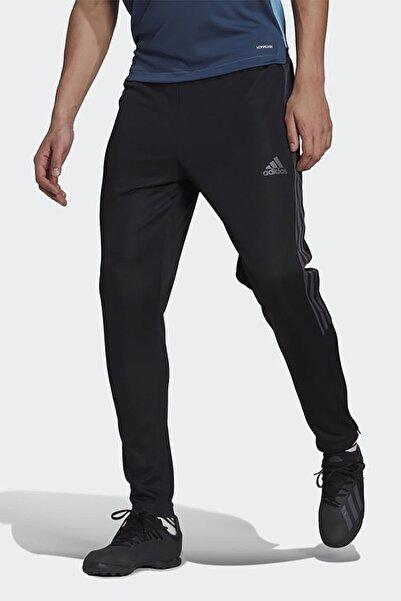 adidas Erkek Futbol Eşofman Altı Tk Pnt Cu Gn5490