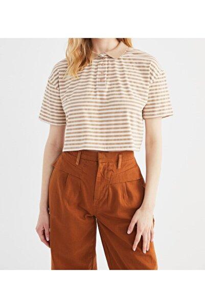 MİLA FASHİON Kadın Vizon Çizgili Polo Yaka Crop T-shirt
