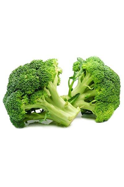 İKB FİDE VE TOHUM Brokoli Fidesi Demet 90 Günlük