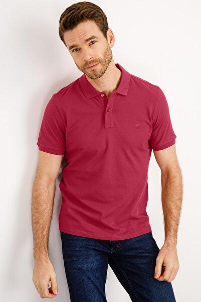 İgs Erkek Gül Modern Fit Polo Yaka T-shirt