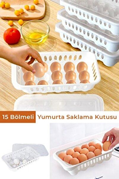 15 Bölmeli Yumurta Saklama Kutusu Yumurta Saklama Kabı