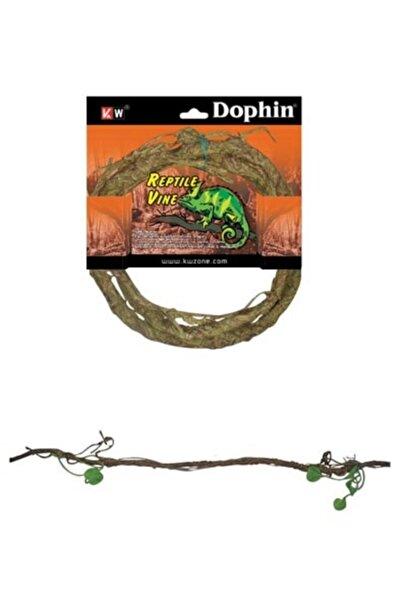 Dophin Sürüngen Aksesuar