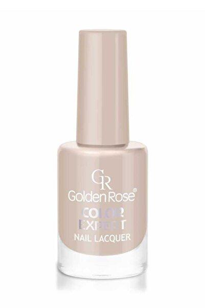 Golden Rose Gr Color Expert Naıl Lacquer No:100