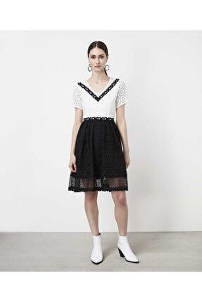 Kadın Siyah Color Block Güpür Elbise