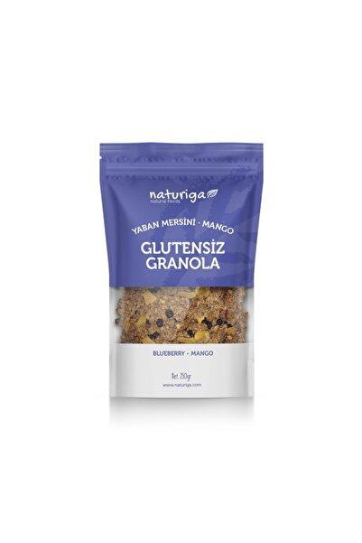 Naturiga Glutensiz Yaban Mersini Ve Mango Granola 250 Gr