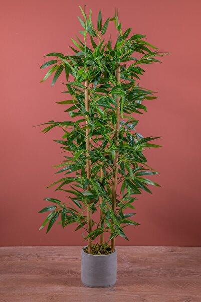 YAPAY ÇİÇEKÇİNİZ Beton Saksıda 100 Cm Bambu Ağacı