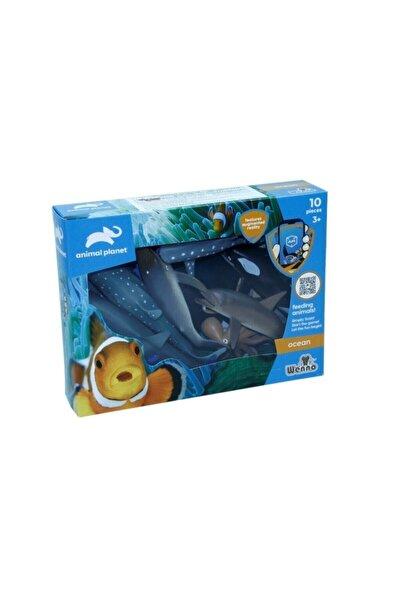 Vardem Kutulu 10 Parça Hayvan Seti Okyanus Hayvanları