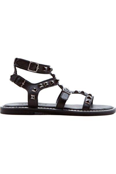 Gloria 740 Kadın Siyah Sandalet