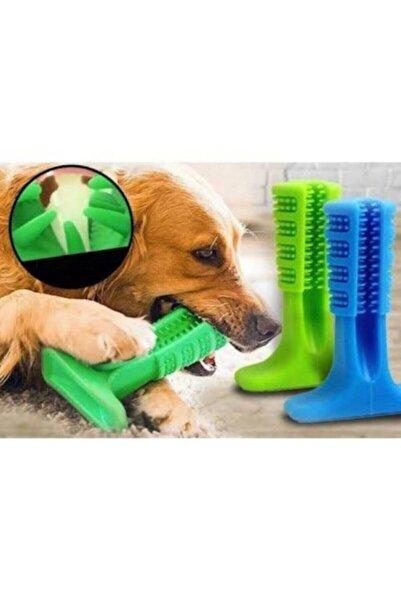 CMT Büyük Boy Köpek Diş Fırçası Isırma Aparatı