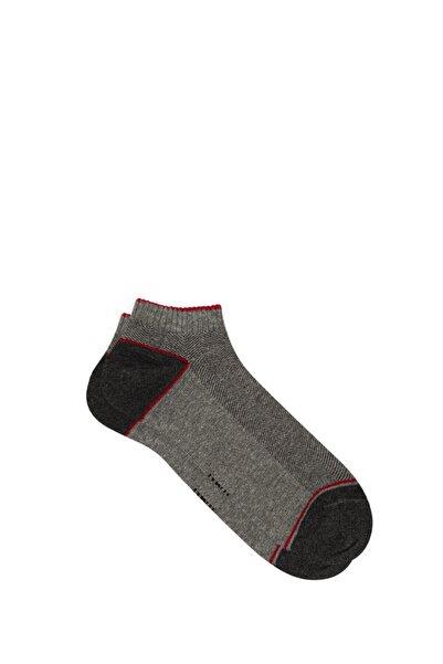 Erkek Çizgili Gri Çorap 092046-25765