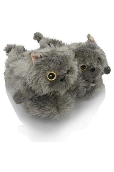 Twigy Kedi 2 Hayvanlı Kedi Kışlık Ev Pandufu