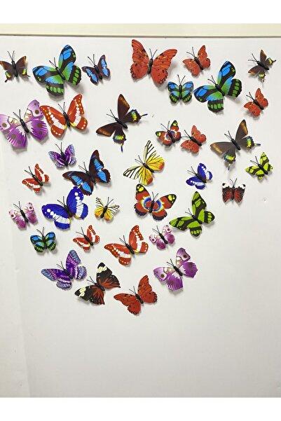 EnGözde Home Consept 36 Adet Rengarenk Katlanır Kanatlı Kelebek Magnet