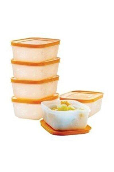 Tupperware Alaska Buzdolabı Saklama Kabı 450 ml 6'lı