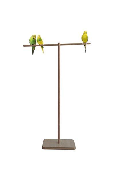 ULDEMART Ahşap Muhabbet Kuşu Tüneği T Tünek 80 Cm