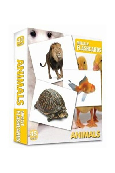 MK Publications Animals Miracle Flashcards (45 Cards)