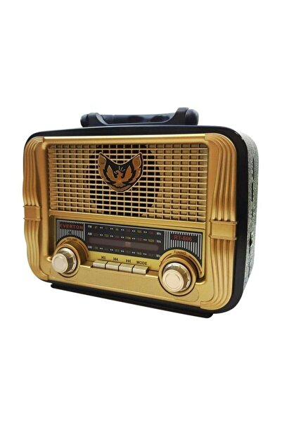 electroon Everton Rt-806 Usb-sd-fm-sw Radyo Müzik Kutusu