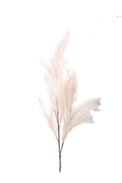 LAMEDORE Sögüt Çiçeği Naturel Krem