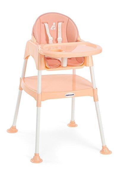 Wellgro Pretty 3in1 Çalışma Masalı Mama Sandalyesi Somon