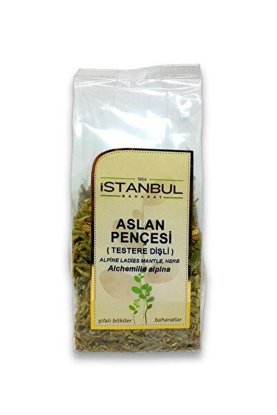 İstanbul Baharat 1 Adet Aslan Pençesi (testere Dişli) 40gr 1.kalite Taptaze