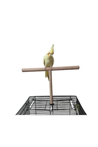 ULDEMART Ahşap Kafes Üstü Papağan Tüneği T Tünek