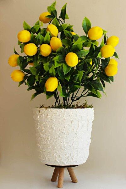 miraye Dekoratif Yapay Çiçek Ayaklı Beyaz Beton Saksı Limon Ağacı