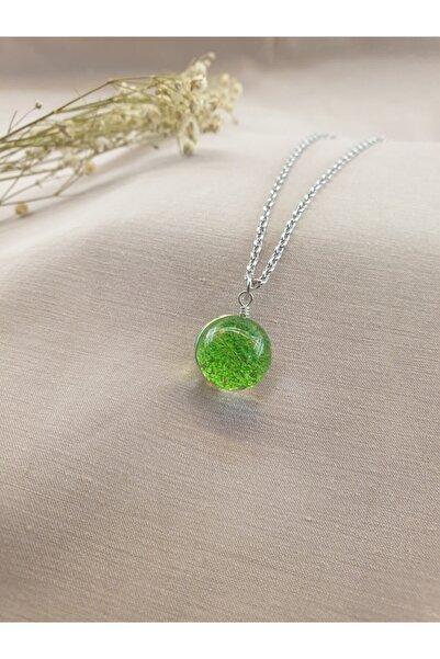 Dukkanka Yaşayan Yeşil Çiçek Gümüş Renk Kolye
