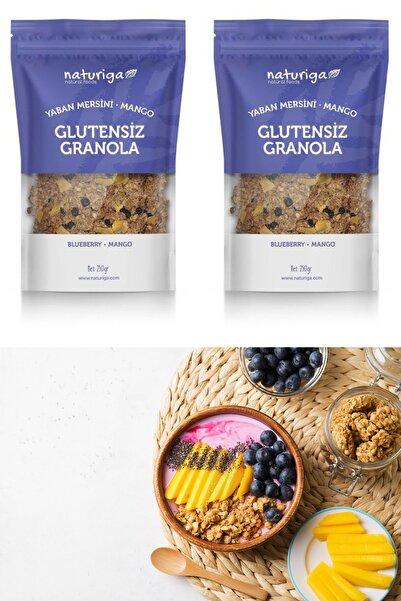 Naturiga Glutensiz Yaban Mersini & Mango Granola 2adet 2x250gr