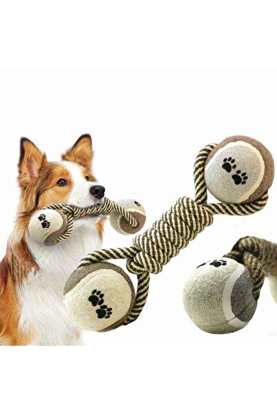 Easy Pet Küçük Ve Orta Irklar Için Köpek Halat Top Oyuncak Diş Çıkarma