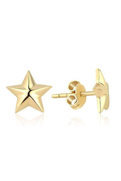 Lizay Pırlanta Altın Yıldız Küpe