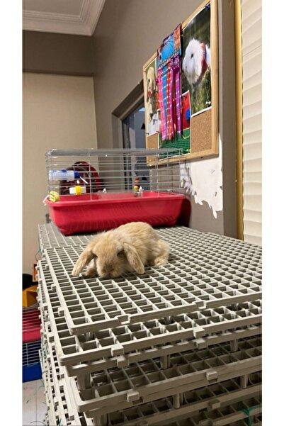 Vixpet 50x50 Ölçü Plastik Tavşan Kafesi Taban Izgarası (SİYAH)