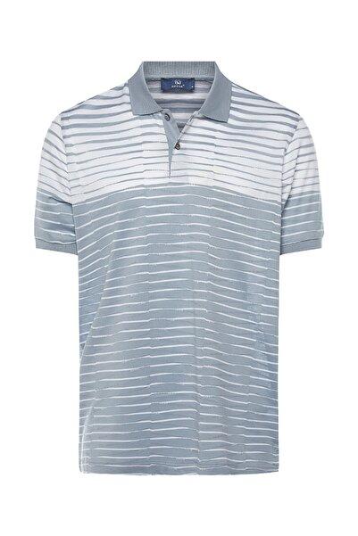 Bisse Erkek Gri Regular Fit Çizgili Polo Yaka T-shirt