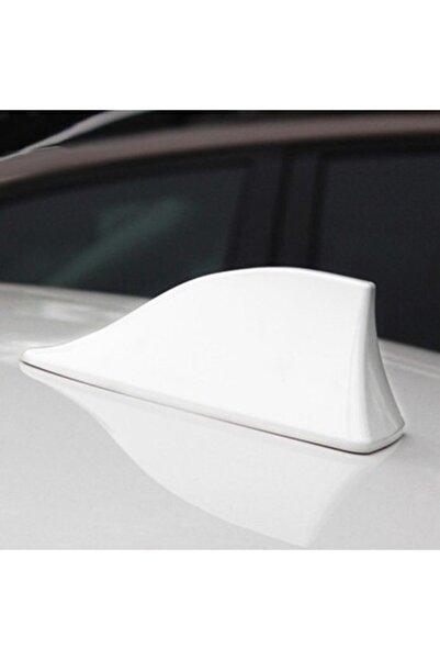 trakkale Beyaz Renk Balıksırtı Süs Anten