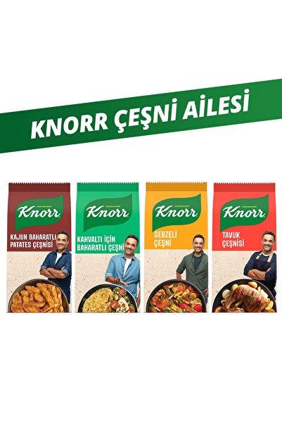 Knorr Çeşni Ailesi