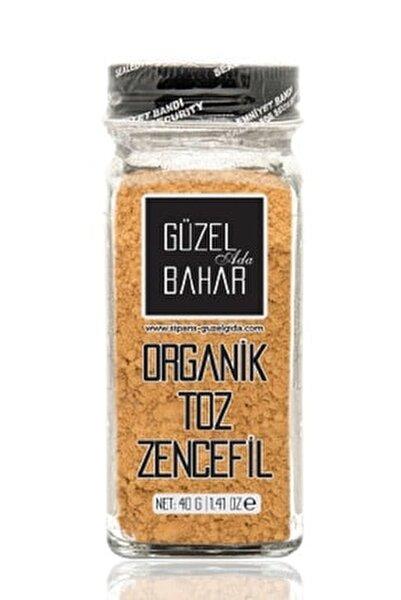Organik Toz Zencefil 40 gr